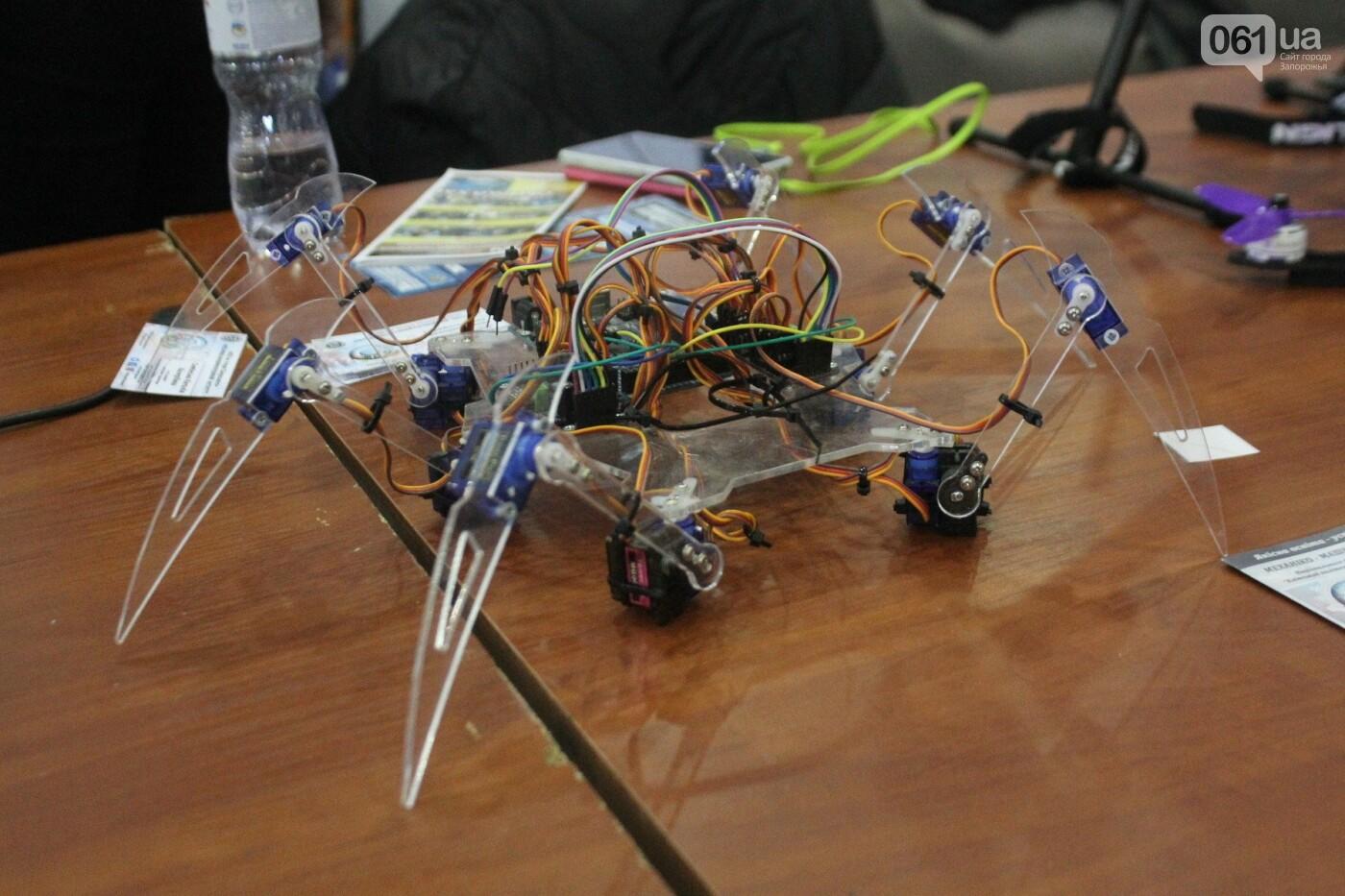 Роботы, киберспорт и спикеры-иностранцы: в Запорожье начался International IT Forum, – ФОТОРЕПОРТАЖ, фото-33