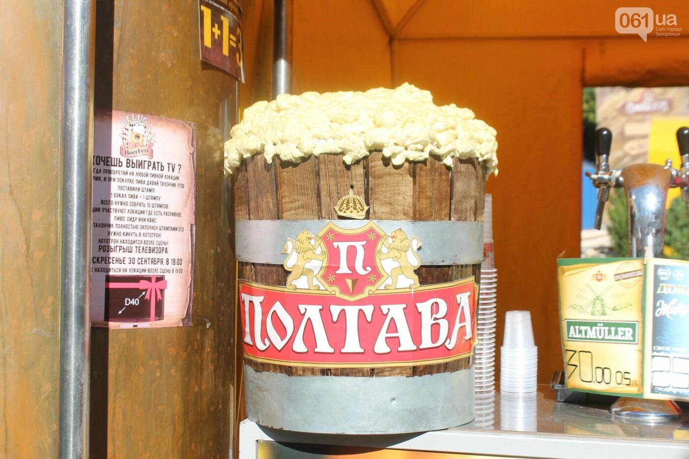 Как в Запорожье прошел пивной фестиваль «Beluga Beer fest», – ФОТОРЕПОРТАЖ, фото-24