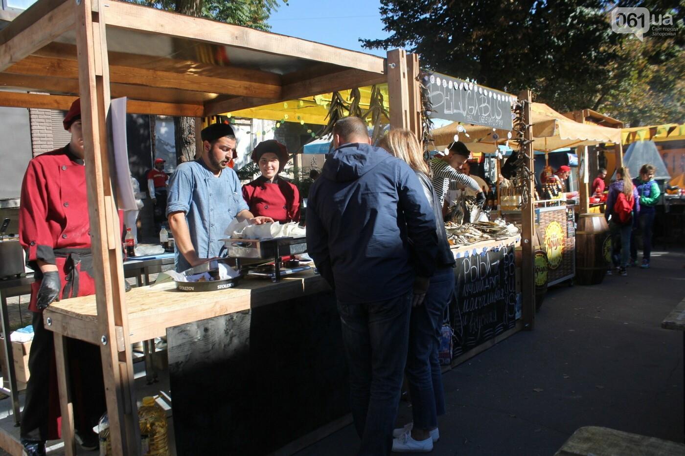 Как в Запорожье прошел пивной фестиваль «Beluga Beer fest», – ФОТОРЕПОРТАЖ, фото-34