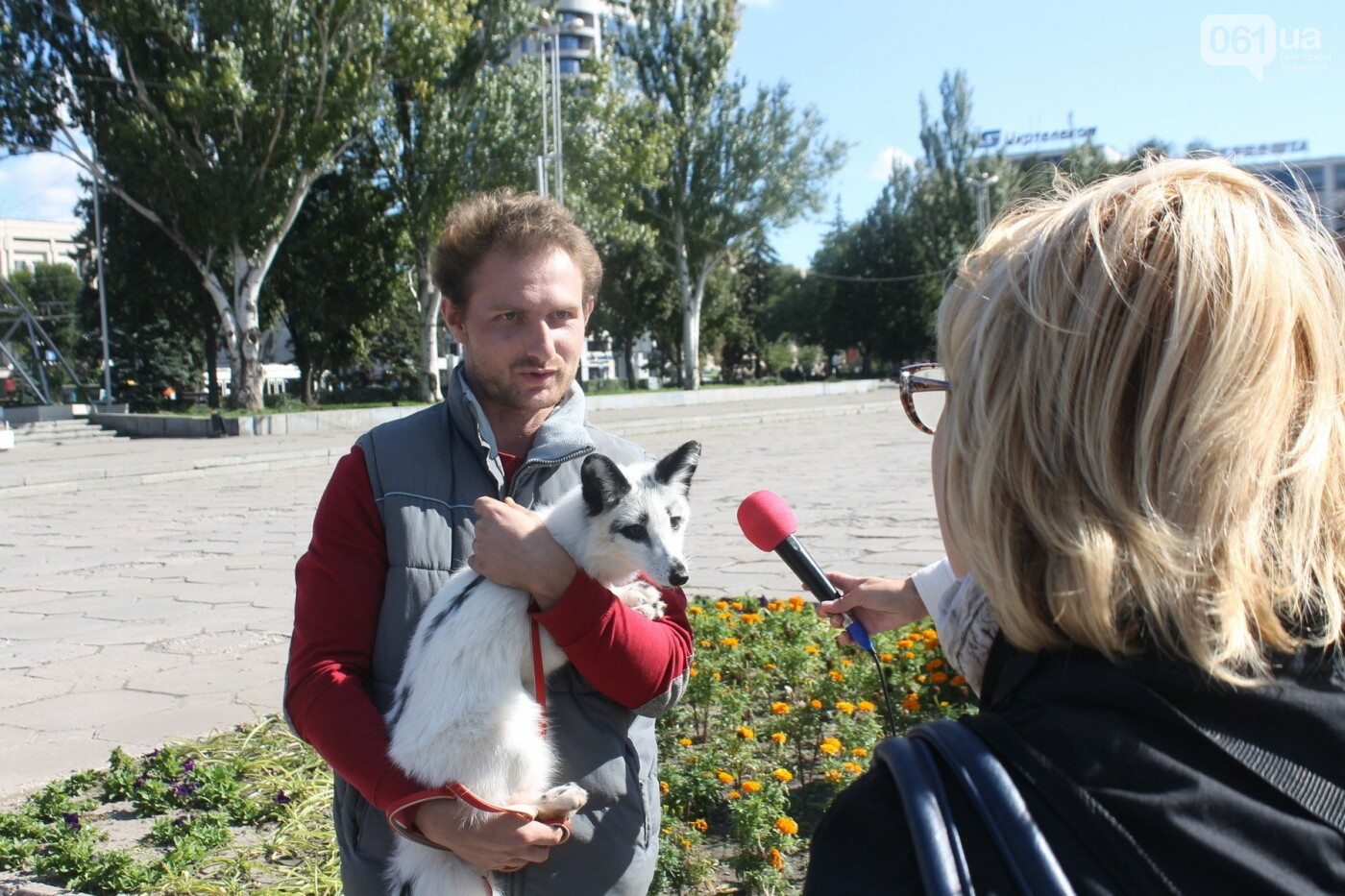 «Защити! Не мучай»: в Запорожье провели марш за права животных, – ФОТОРЕПОРТАЖ, ВИДЕО, фото-2