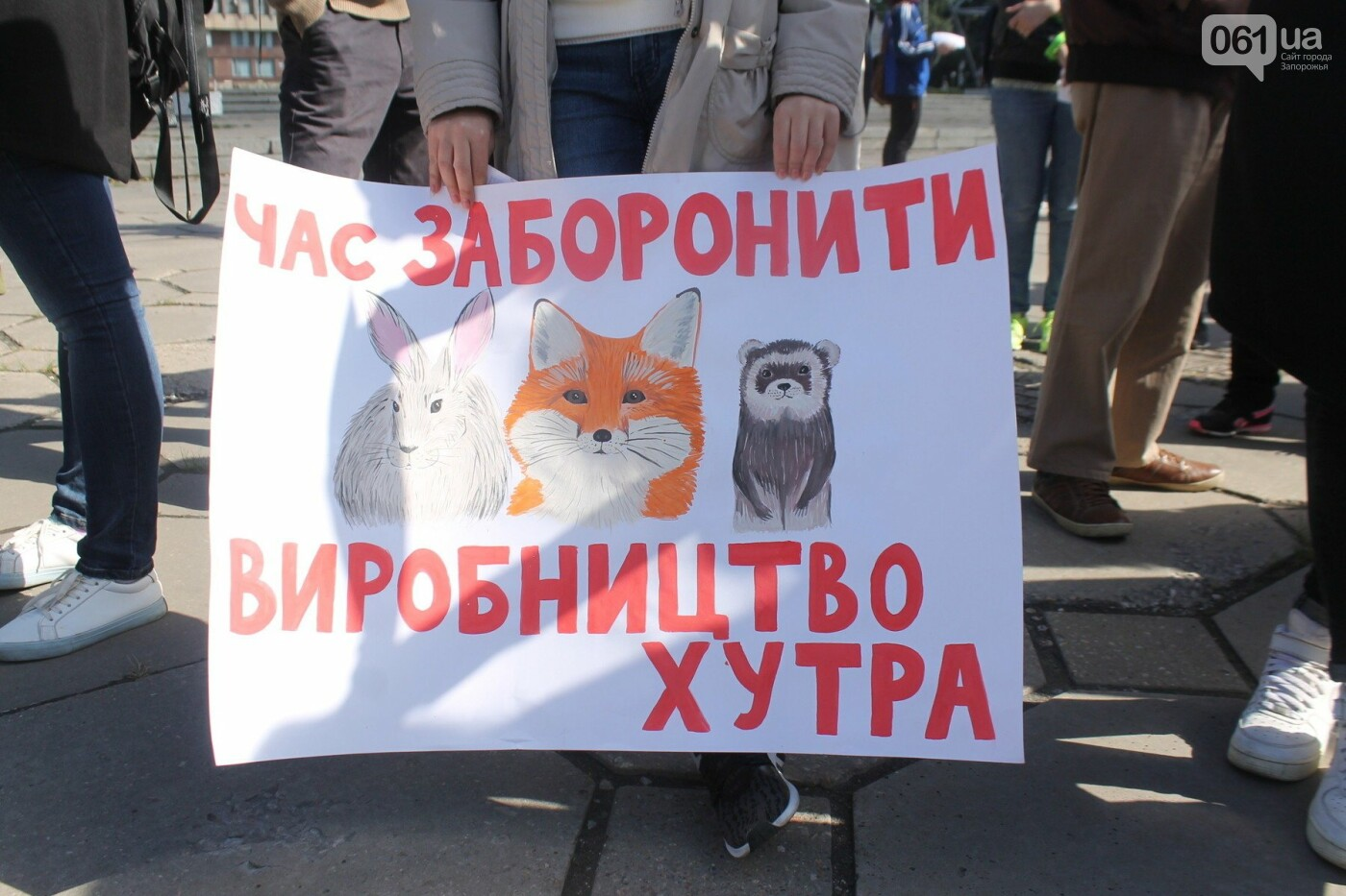 «Защити! Не мучай»: в Запорожье провели марш за права животных, – ФОТОРЕПОРТАЖ, ВИДЕО, фото-7