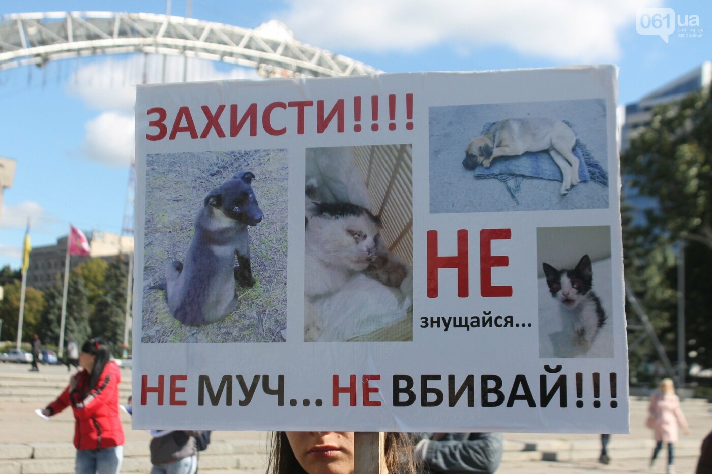 «Защити! Не мучай»: в Запорожье провели марш за права животных, – ФОТОРЕПОРТАЖ, ВИДЕО, фото-4