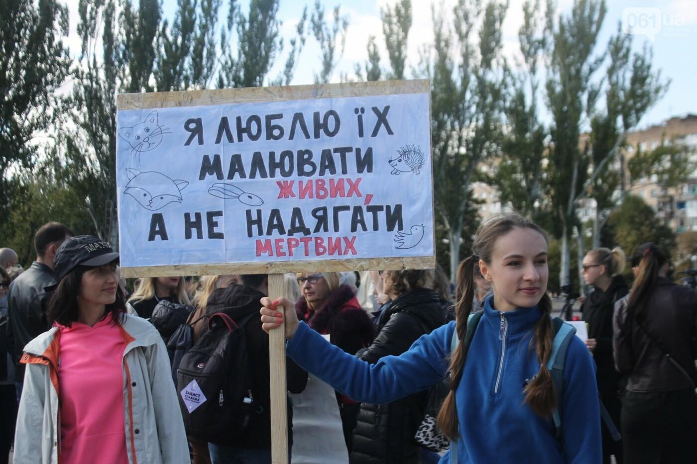 «Защити! Не мучай»: в Запорожье провели марш за права животных, – ФОТОРЕПОРТАЖ, ВИДЕО, фото-1