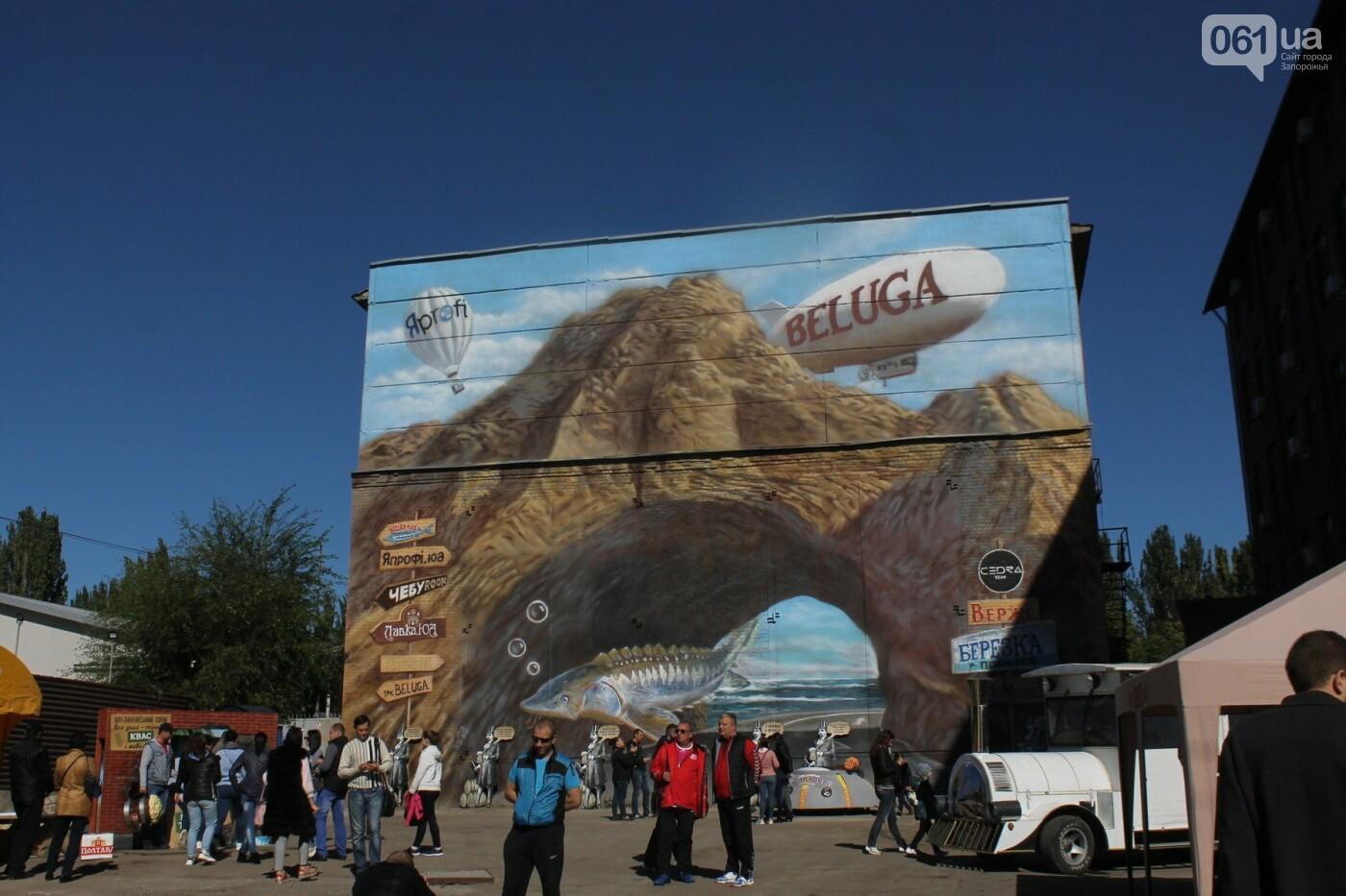 Как в Запорожье прошел пивной фестиваль «Beluga Beer fest», – ФОТОРЕПОРТАЖ, фото-36