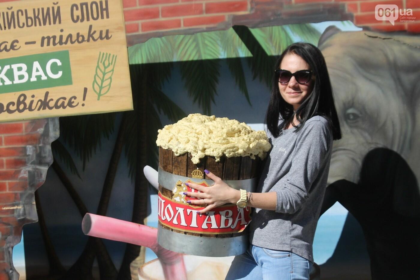 Как в Запорожье прошел пивной фестиваль «Beluga Beer fest», – ФОТОРЕПОРТАЖ, фото-2