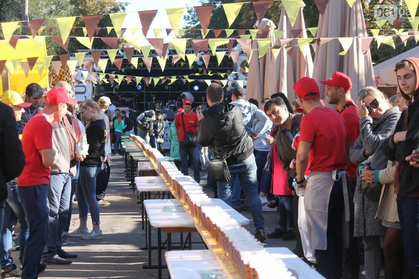 Как в Запорожье прошел пивной фестиваль «Beluga Beer fest», – ФОТОРЕПОРТАЖ, фото-55