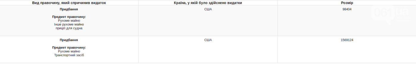 Депутата запорожского горсовета, которая отмечала день рождения в компании украинских звезд, вызвали в НАПК, фото-1