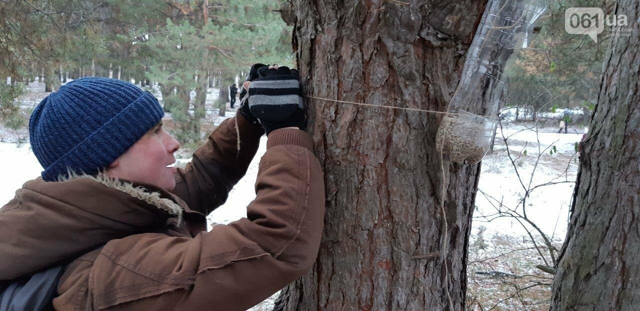 Запорожцы вышли на первую в этом году традиционную подкормку птиц на Хортице, - ФОТОРЕПОРТАЖ, фото-5