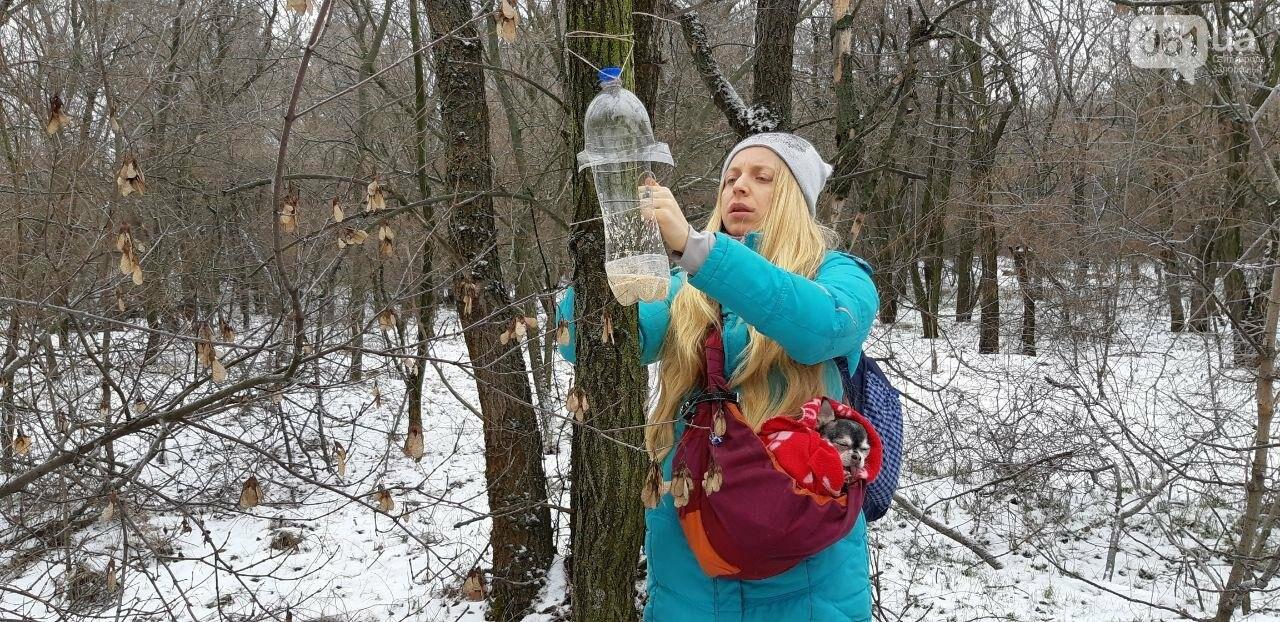 Запорожцы вышли на первую в этом году традиционную подкормку птиц на Хортице, - ФОТОРЕПОРТАЖ, фото-3
