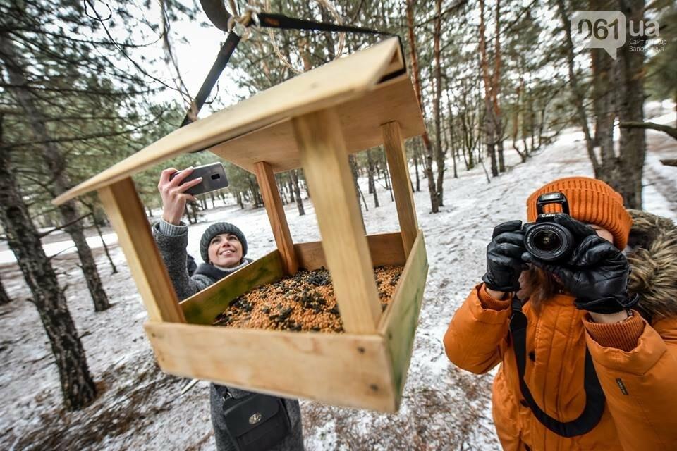 Запорожцы вышли на первую в этом году традиционную подкормку птиц на Хортице, - ФОТОРЕПОРТАЖ, фото-27