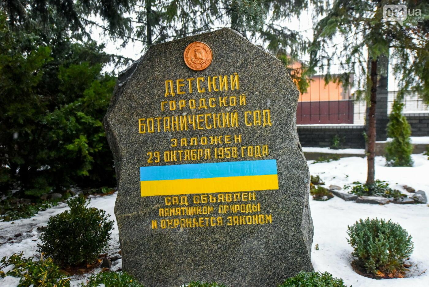 """Бананы, кинкан, огромные лимоны и """"райская птица"""" - запорожский ботанический сад в фотографиях, фото-1"""