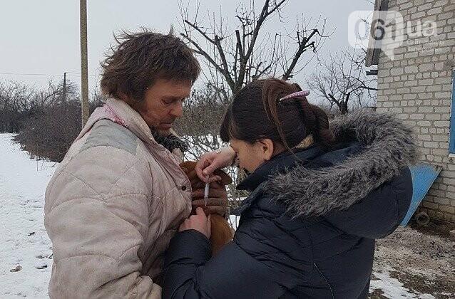 В Запорожской области волк искусал троих людей: они госпитализированы, - ФОТО, фото-4