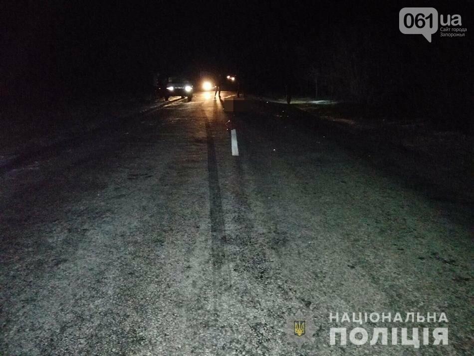 В Запорожской области насмерть сбили пожилого пешехода, – ФОТО, фото-1