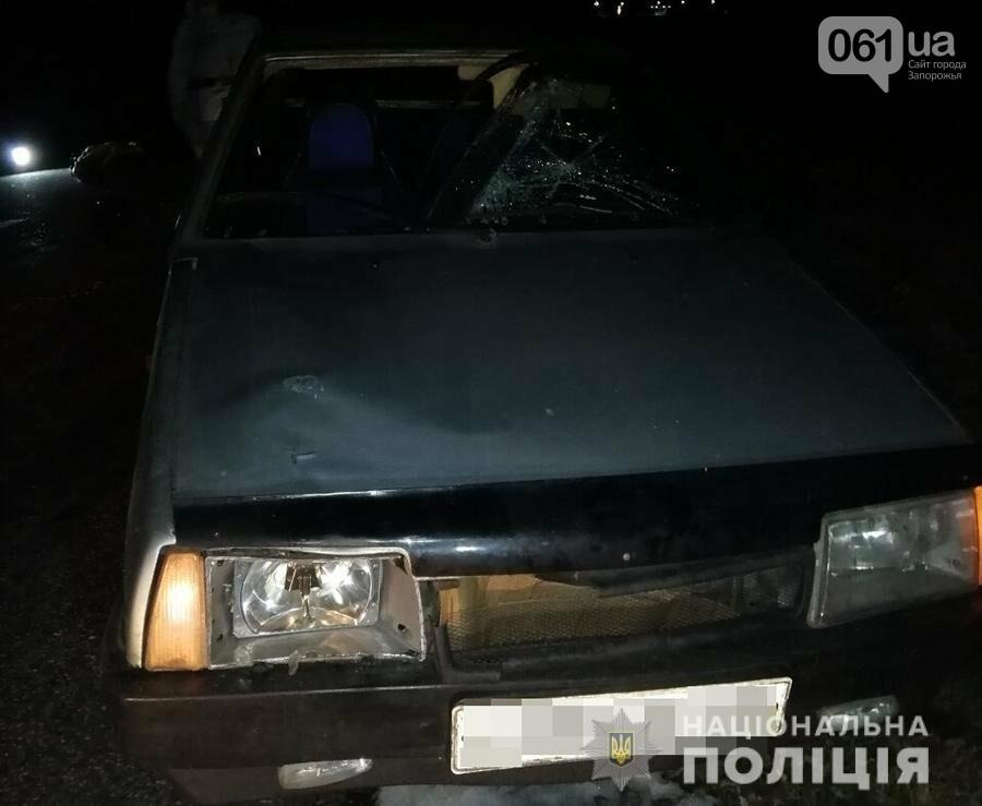 В Запорожской области насмерть сбили пожилого пешехода, – ФОТО, фото-2