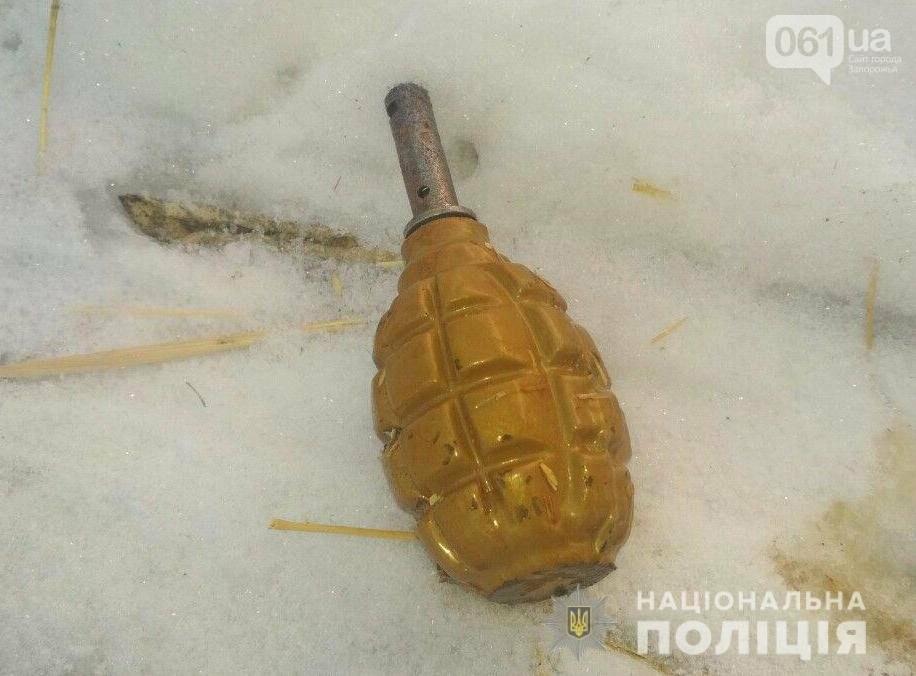 Под Вольнянском местный житель угрожал сотрудникам облэнерго пистолетом и бросил гранату в полицейских, фото-5