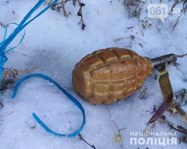 Под Вольнянском местный житель угрожал сотрудникам облэнерго пистолетом и бросил гранату в полицейских, фото-2