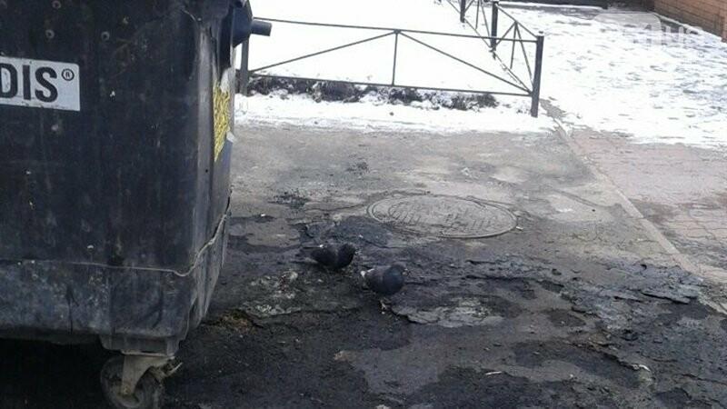В Запорожье сожгли 11 контейнеров для мусора, фото-1