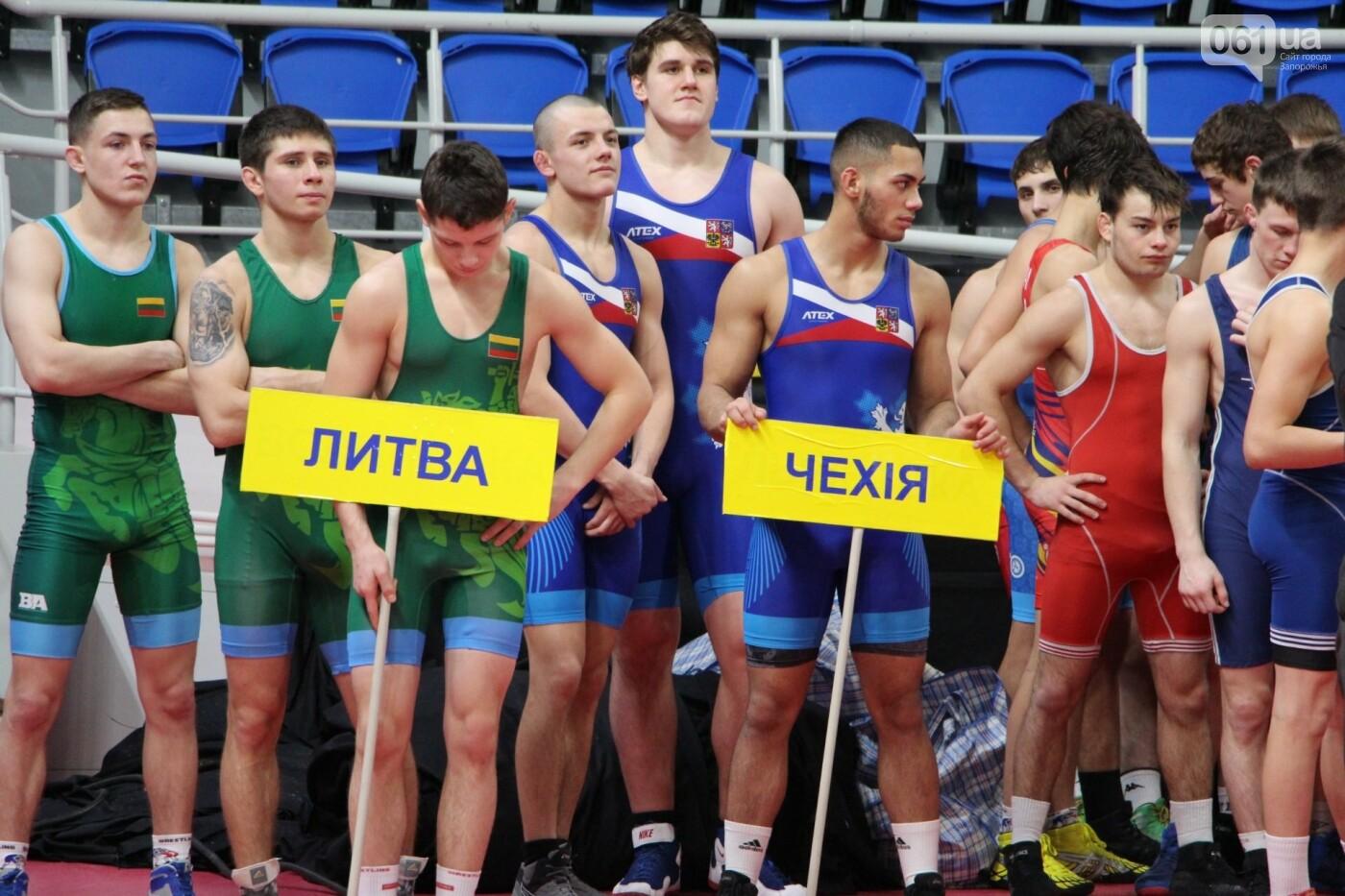 В Запорожье приехали борцы из шести стран, - ФОТО, фото-3