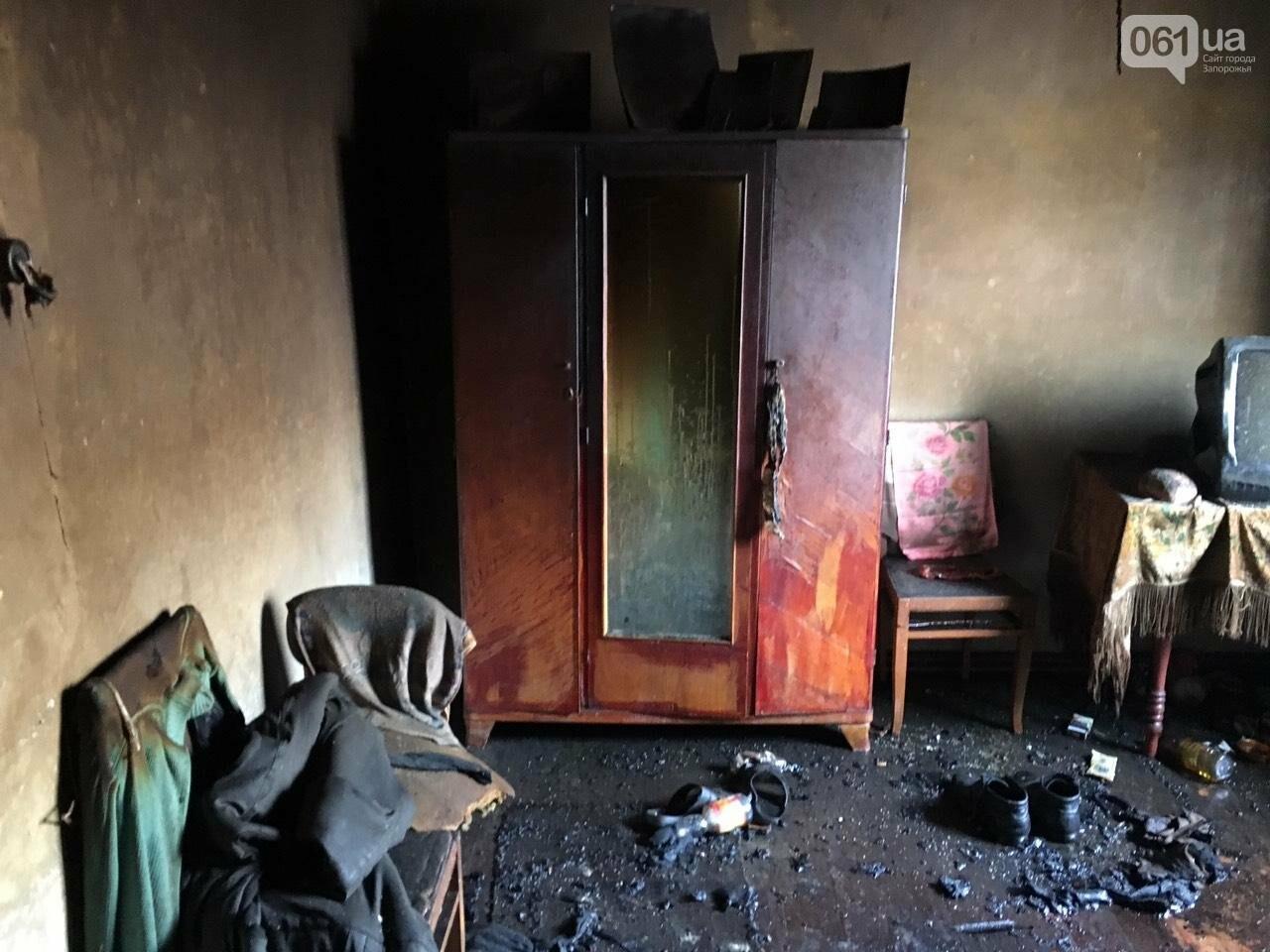 Под Запорожьем на пожаре погиб хозяин дома, - ФОТО, фото-2