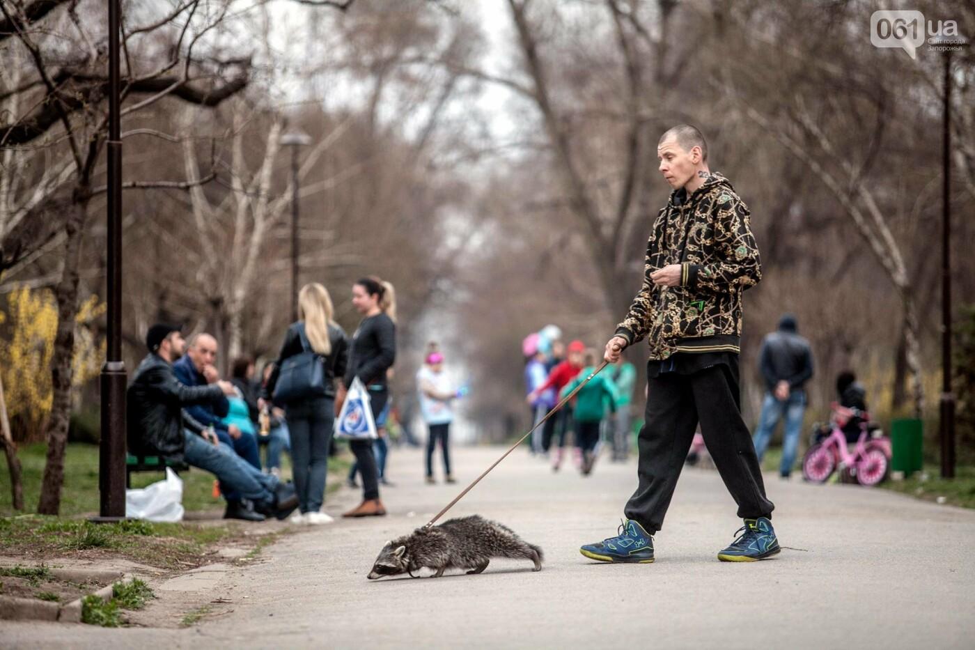 Киевский фотограф показал Кичкас в 50 фотографиях: «своя особая красота», - ФОТОРЕПОРТАЖ, фото-5