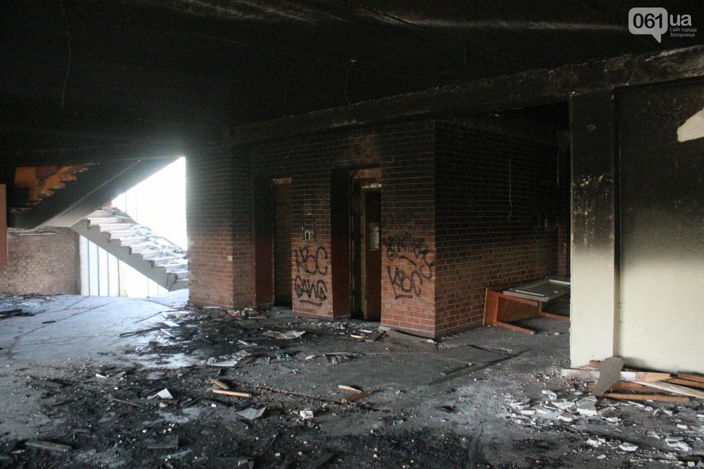 В центре Запорожья разрушается заброшенное здание института «Запорожгражданпроект», – ФОТОРЕПОРТАЖ  , фото-4