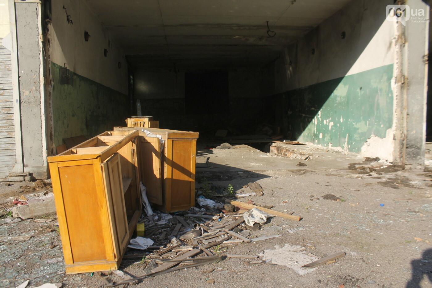 В центре Запорожья разрушается заброшенное здание института «Запорожгражданпроект», – ФОТОРЕПОРТАЖ  , фото-5