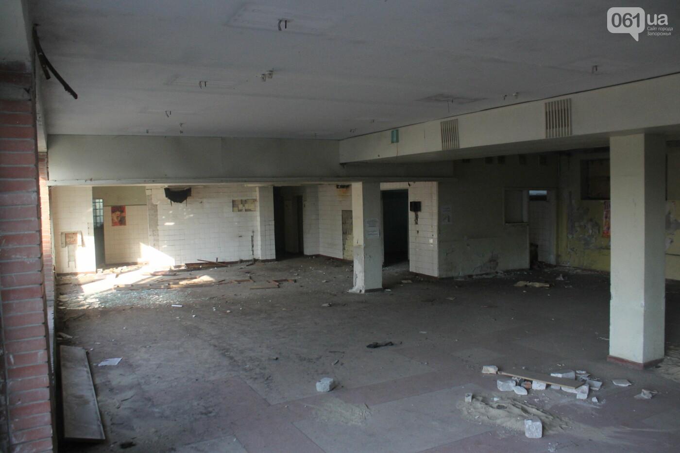В центре Запорожья разрушается заброшенное здание института «Запорожгражданпроект», – ФОТОРЕПОРТАЖ  , фото-10