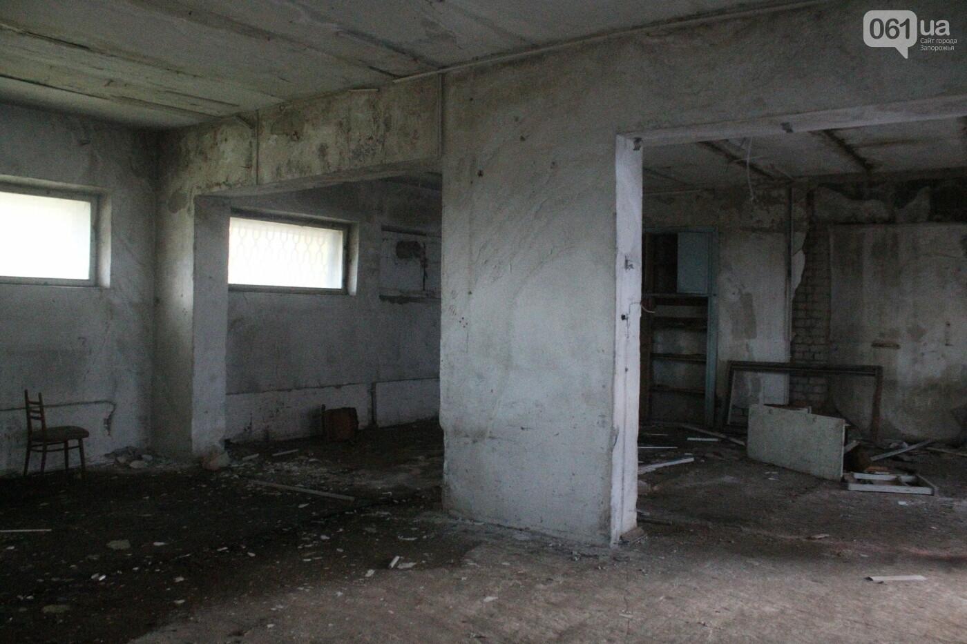 В центре Запорожья разрушается заброшенное здание института «Запорожгражданпроект», – ФОТОРЕПОРТАЖ  , фото-17