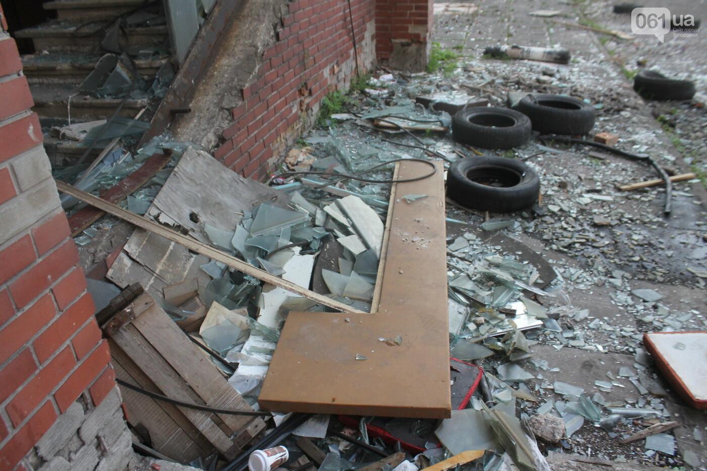 В центре Запорожья разрушается заброшенное здание института «Запорожгражданпроект», – ФОТОРЕПОРТАЖ  , фото-21