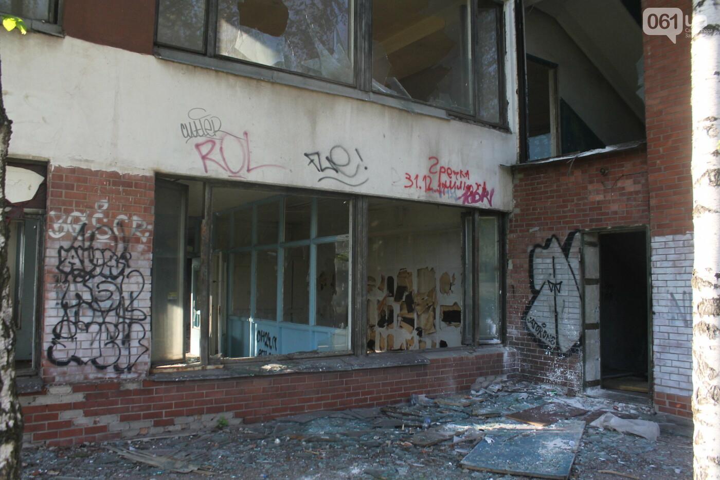 В центре Запорожья разрушается заброшенное здание института «Запорожгражданпроект», – ФОТОРЕПОРТАЖ  , фото-25