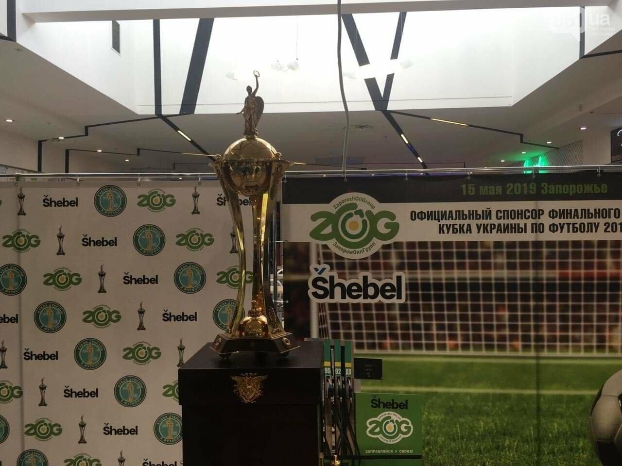 Главный футбольный трофей страны выставили в запорожском торговом центре, - ФОТО, фото-4