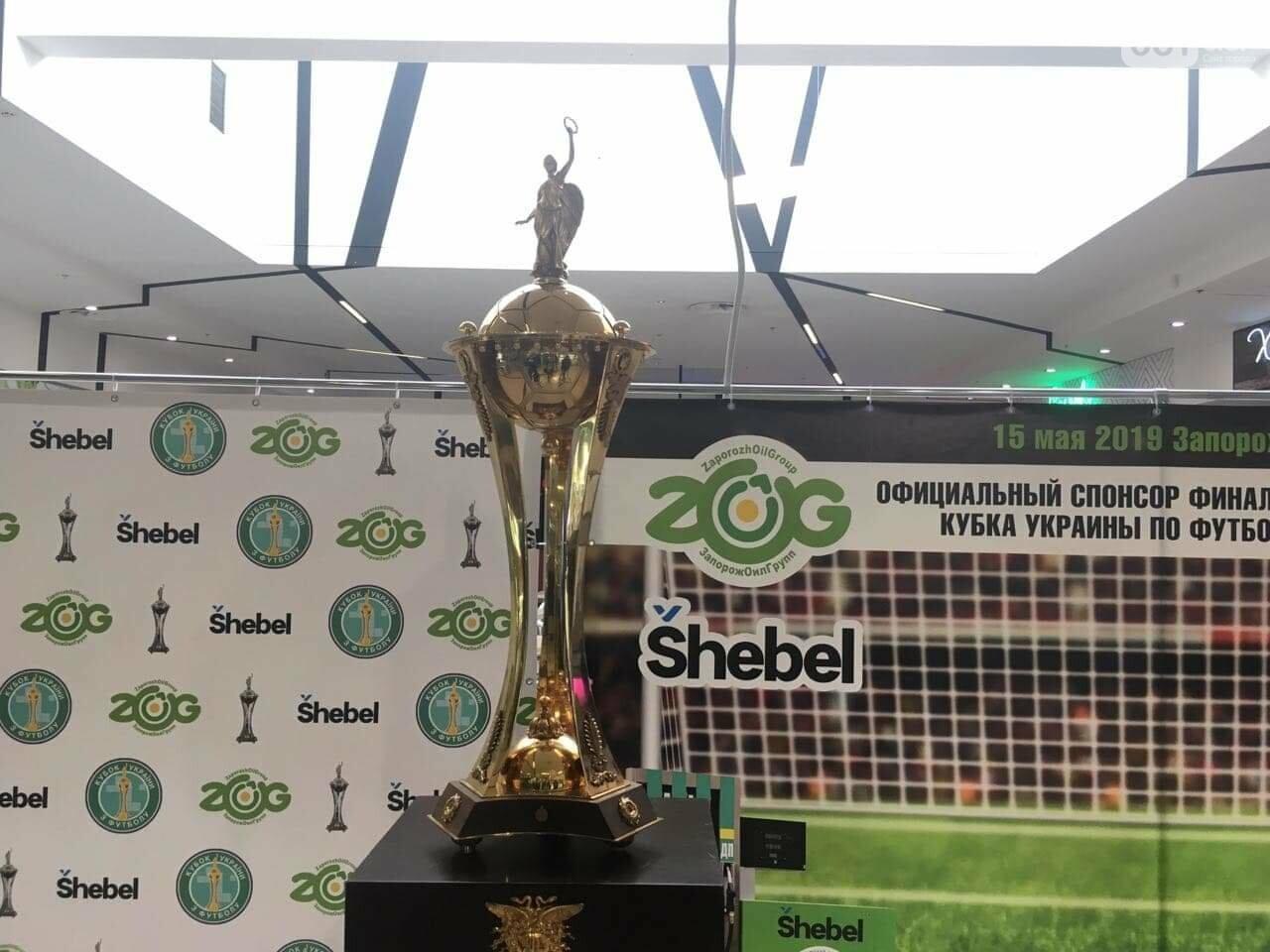 Главный футбольный трофей страны выставили в запорожском торговом центре, - ФОТО, фото-1