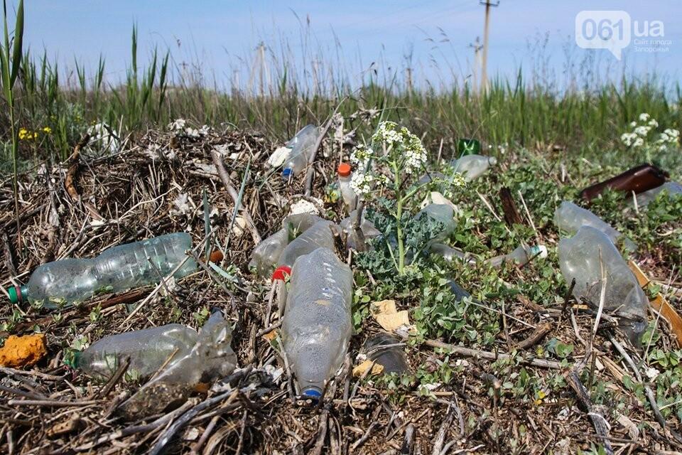 В Кирилловке провели масштабный субботник – вывезли 10 тонн мусора, - ФОТОРЕПОРТАЖ, фото-1