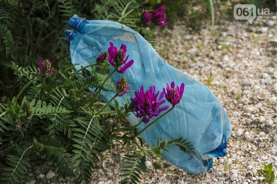 В Кирилловке провели масштабный субботник – вывезли 10 тонн мусора, - ФОТОРЕПОРТАЖ, фото-15