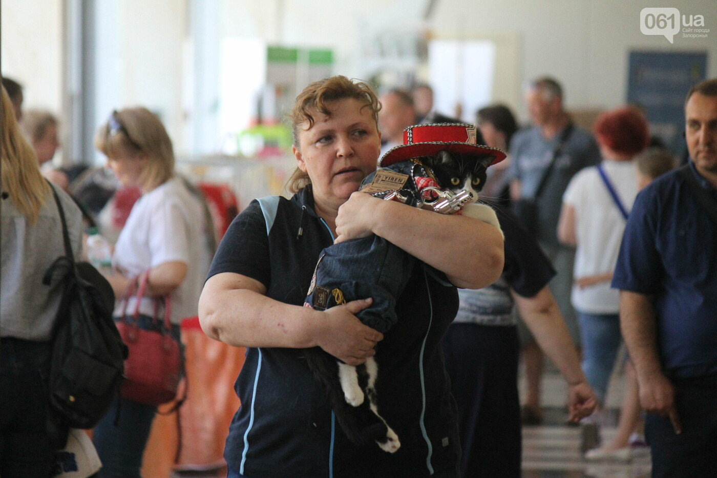 В Запорожье на выставке кошек показали 130 питомцев со всей Украины, – ФОТОРЕПОРТАЖ, фото-18