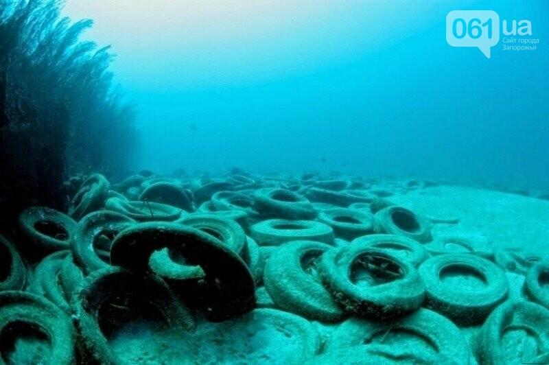 В Бердянске из покрышек создают искусственные рифы - в Европе такой эксперимент считают опасным, - ФОТО, фото-3