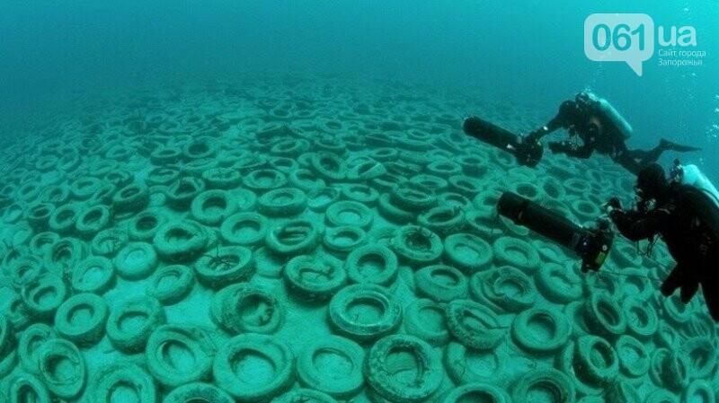 В Бердянске из покрышек создают искусственные рифы - в Европе такой эксперимент считают опасным, - ФОТО, фото-2