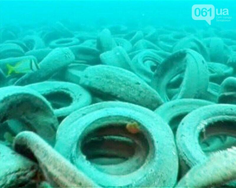 В Бердянске из покрышек создают искусственные рифы - в Европе такой эксперимент считают опасным, - ФОТО, фото-4