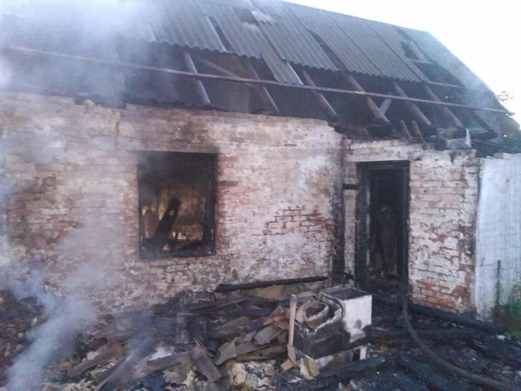 В Запорожской области на пожаре погибла 42-летняя женщина, фото-1