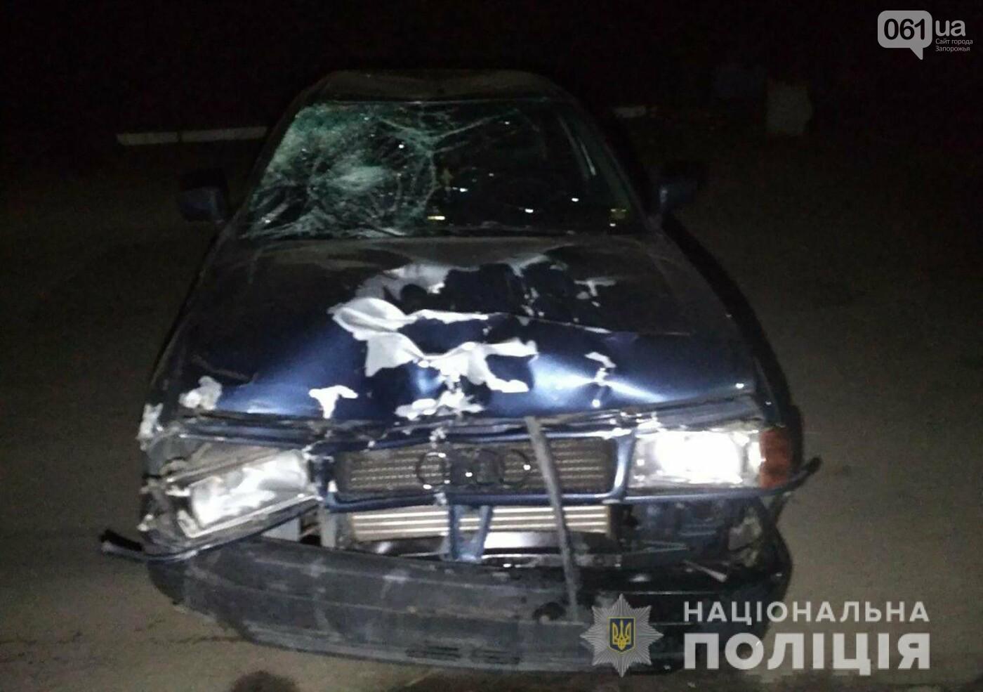 В Пологах пьяный водитель под наркотиками насмерть сбил двух велосипедистов: мальчик умер в больнице, - ФОТО, фото-1