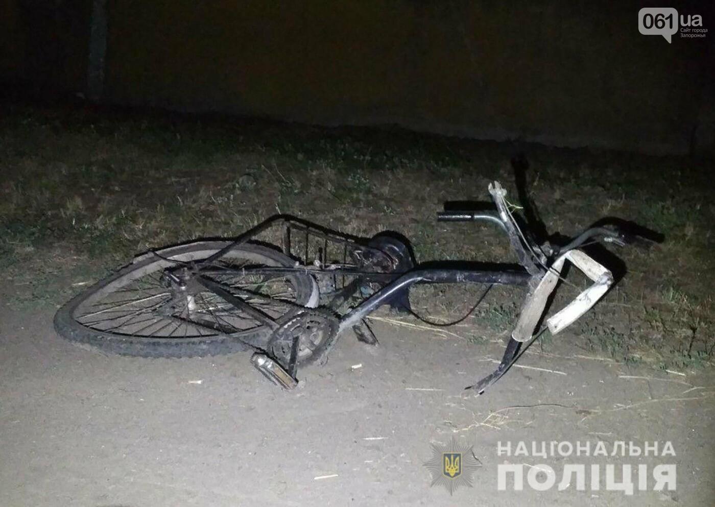 В Пологах пьяный водитель под наркотиками насмерть сбил двух велосипедистов: мальчик умер в больнице, - ФОТО, фото-2