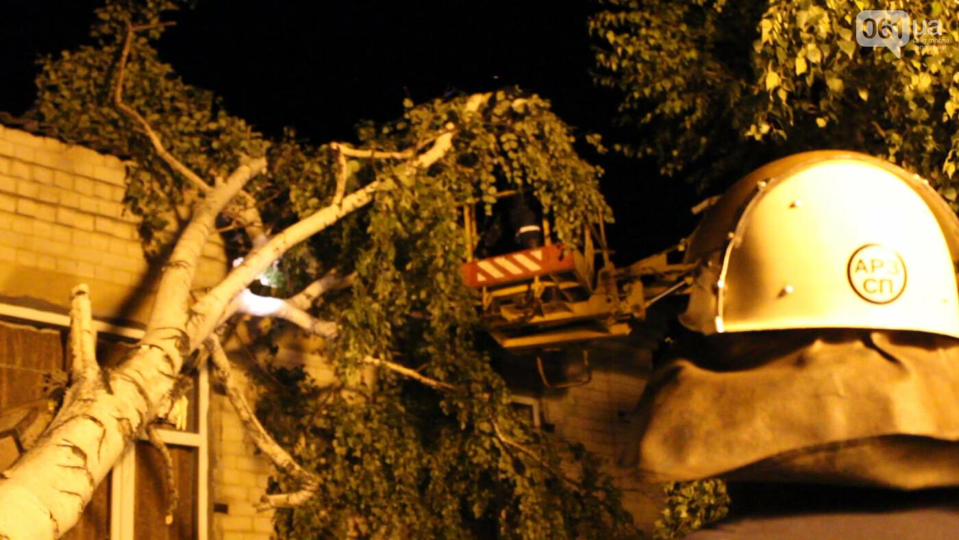В Запорожской области из-за урагана разрушена крыша школы, 368 домов остались без электроэнергии, - ФОТОРЕПОРТАЖ, фото-7