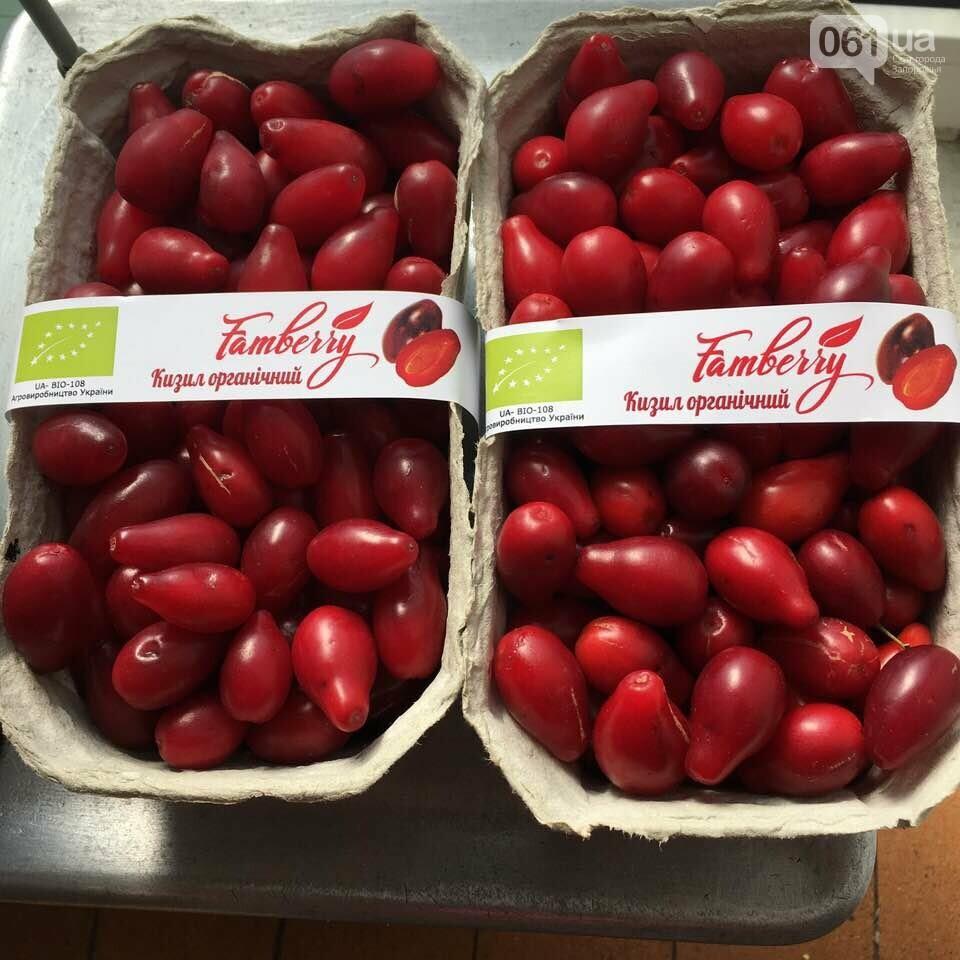 В украинских супермаркетах впервые появился кизил - ягоду поставляет запорожская компания, фото-1