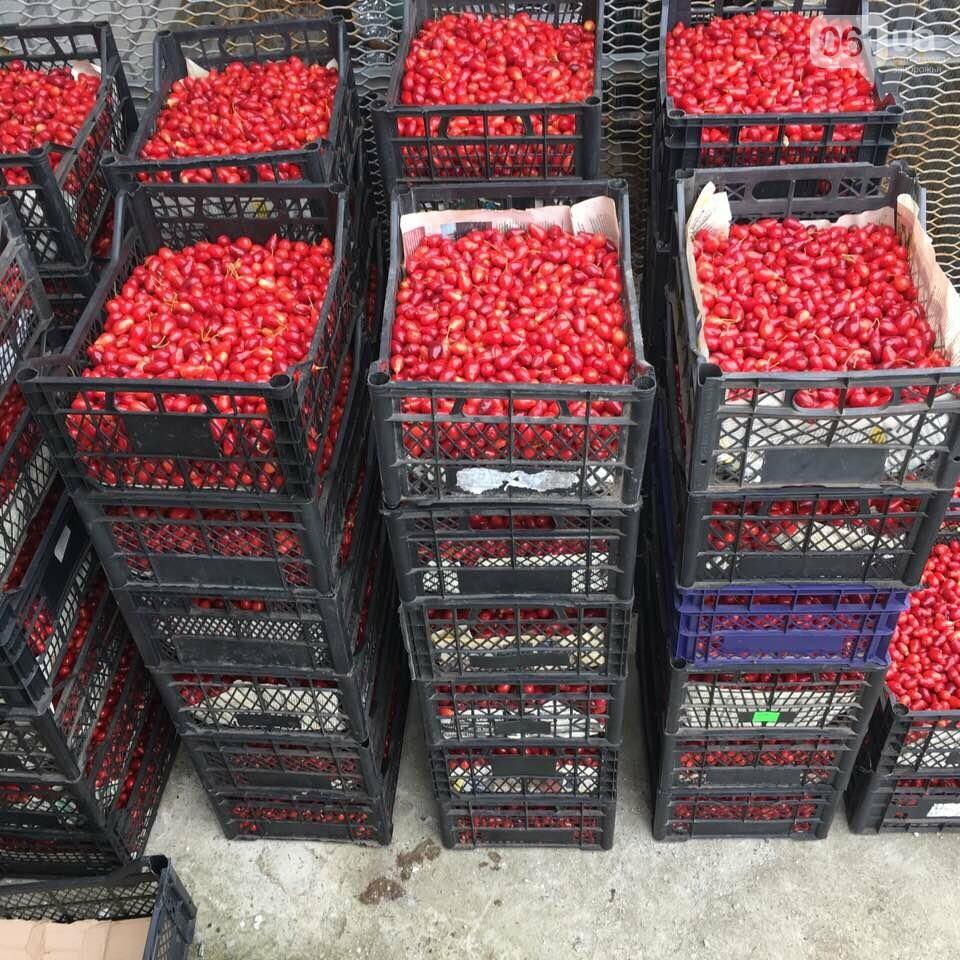 В украинских супермаркетах впервые появился кизил - ягоду поставляет запорожская компания, фото-2