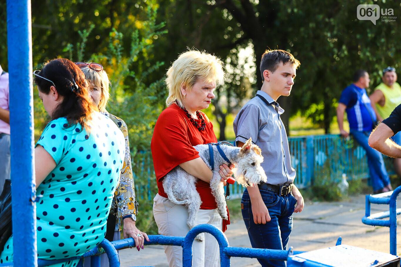 Речной пассажирский транспорт в Запорожье работает неделю: есть ли спрос и что говорят в мэрии, - ФОТОРЕПОРТАЖ, фото-24