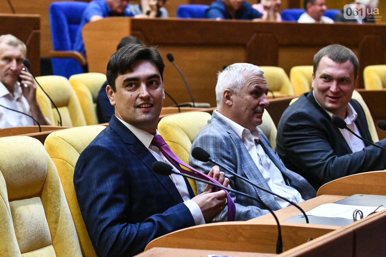 Представление нового запорожского губернатора в высказываниях и фотографиях, фото-12