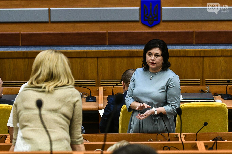 Представление нового запорожского губернатора в высказываниях и фотографиях, фото-17