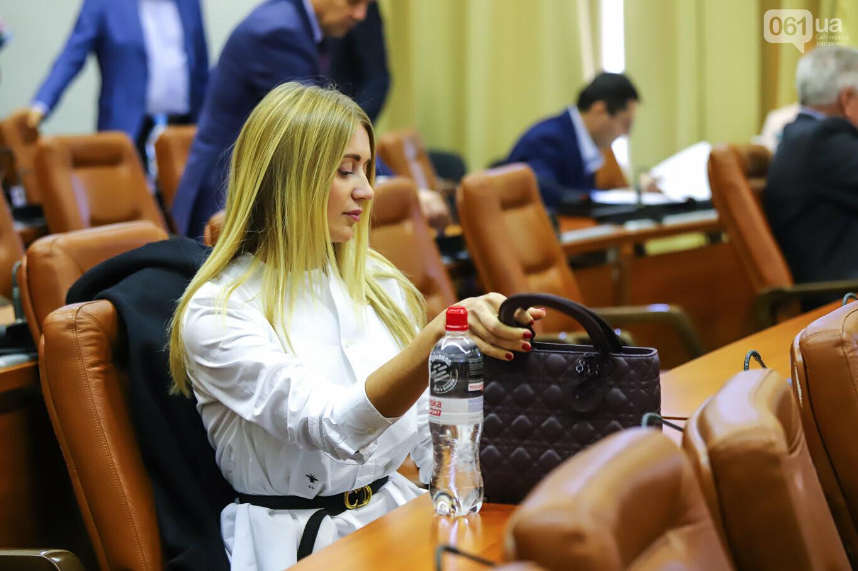 Кальцев, Штепа и наряд от Dior: как проходит сессия Запорожского горсовета, - ФОТОРЕПОРТАЖ, фото-13