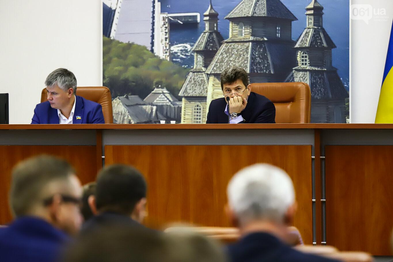 Кальцев, Штепа и наряд от Dior: как проходит сессия Запорожского горсовета, - ФОТОРЕПОРТАЖ, фото-62