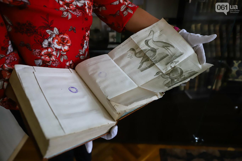 Газеты на иврите и 18-килограммовая книга: что берегут в хранилищах Запорожской областной библиотеки, - ФОТОРЕПОРТАЖ, фото-21